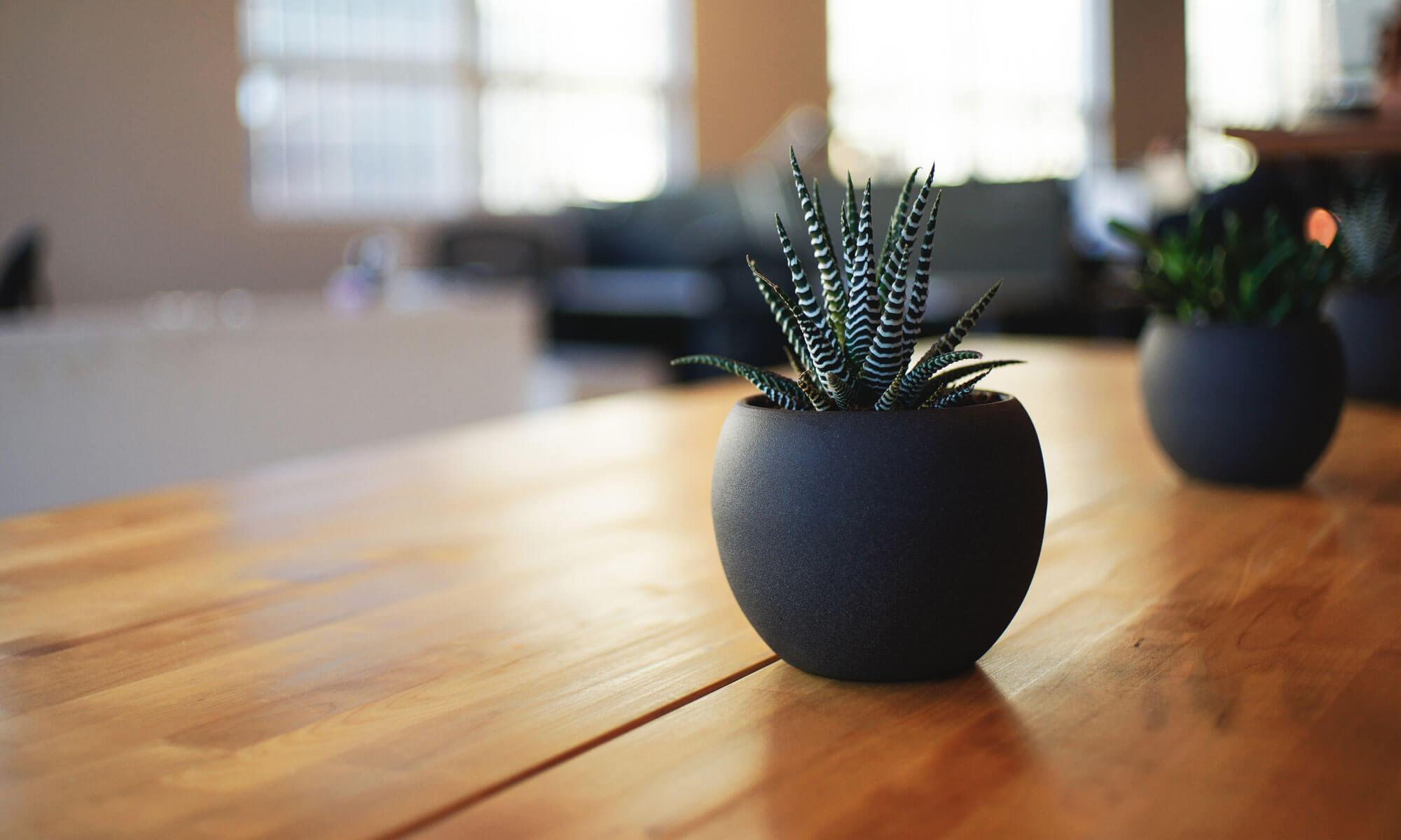 株式会社リファインド staff blog